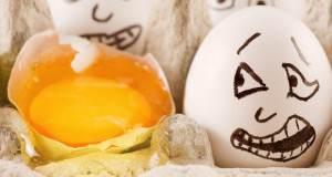 ss-eggs