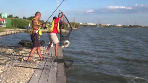 Campionatul de Pescuit la Crap la AGVPS 2017
