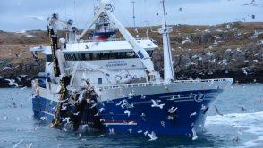 Parlamentul UE a votat pentru interzicerea pescuitului electric