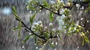 ANM preconizeaza o primavara cu precipitatii mai bogate decat de obicei