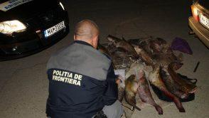 Noi actiuni desfasurate de politie pentru protejarea fondului piscicol