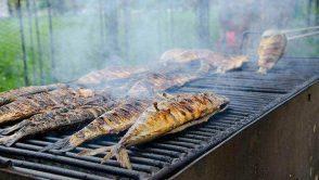Festivalul Pescaresc, editia a VI-a, pregateste anul acesta vizitatorilor o uriasa supriza!