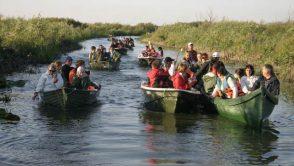 De Paste, aglomeratie mare in Delta Dunarii