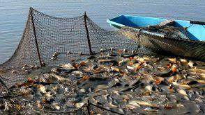 Iohannis contesta legalitatea OUG privind concesionarea pentru pescuit si acvacultura