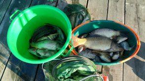 Lacul Peri – pescuit asa cum va doriti