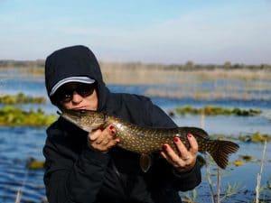 Delta Dunării - pescuit la știucă